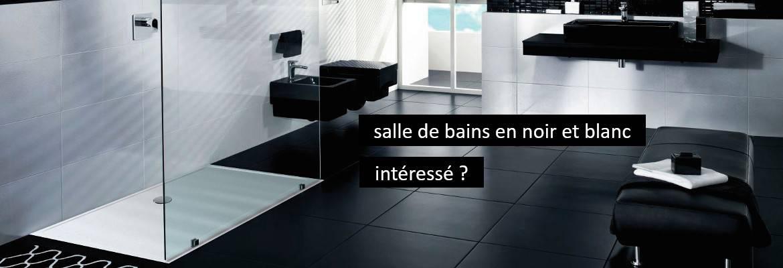 Tub de douche pour salle de bains en noir et blanc